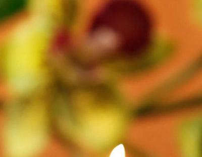 Массаж и иглорефлексотерапия